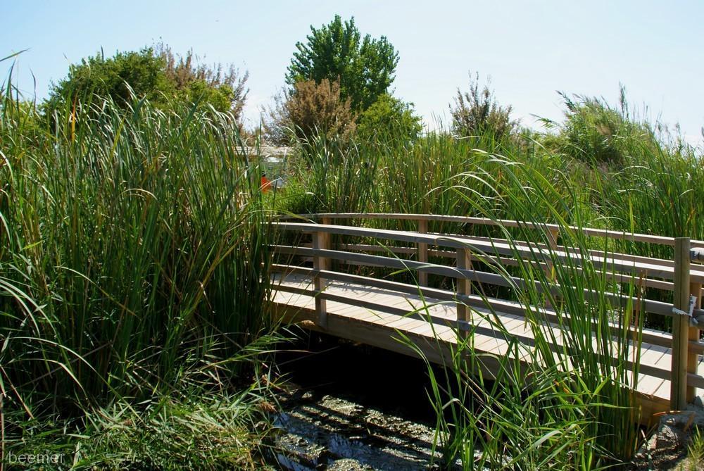 Sendas Urbanas, itinerarios que unen la ciudad con sus entornos naturales