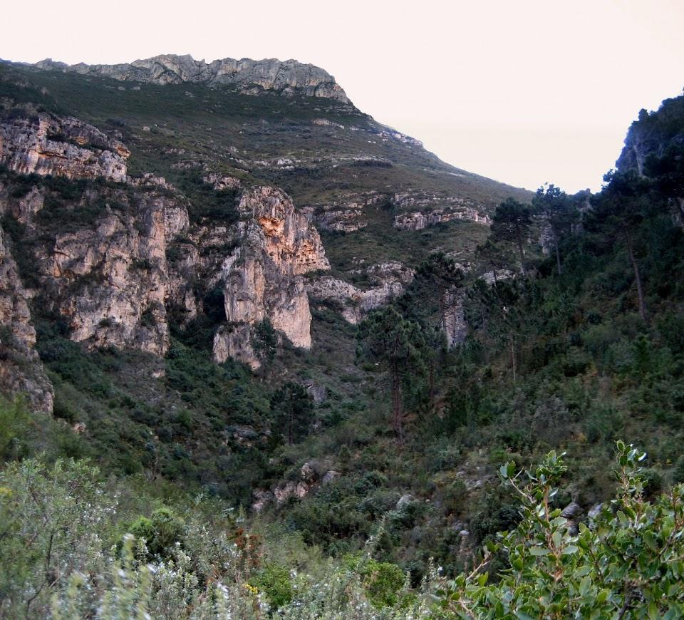 Excursión PlatjaNatura: visita al espacio natural Parpalló-Borrell