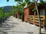 camping-la-falaguera-la-safor-0_150x112