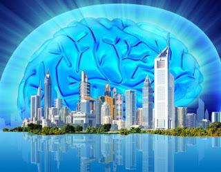 ¿Gandia una «Smart city»? Una flor no hace primavera