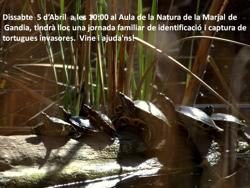 Actividades aula natura
