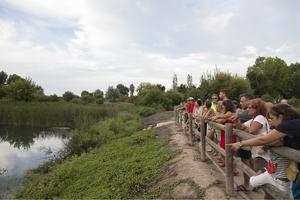 Platja#Natura, una experiencia para conocer el patrimonio natural de Gandia