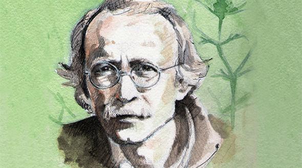 Joan Pellicer. La saviesa de les nostres plantes