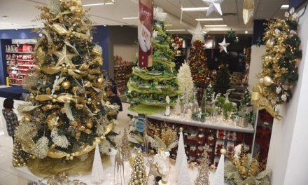 «Prepárate la Navidad» en Fira Mercat Gandia