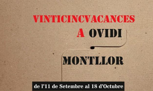 Exposición «25 vacances a Ovidi»