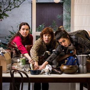 «Família normal», de L'Horta Teatre
