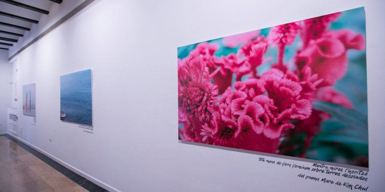 Exposición fotográfica «Pyongyang. Un altra Corea» de Joan Palomares